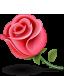 Roseicon